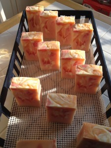 Freshly cut soap